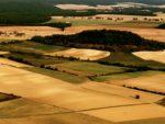 Comment les éoliennes génèrent des nuisances touristiques graves pour l'économie locale ?